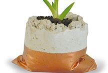 Idee per piante giardino terrazzo