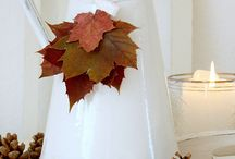 It's Fall!  / Fall Decor Ideas