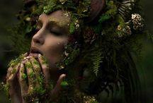 COLLECTION - Voix de la nature