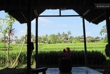 Bali moje láska /   Bali & Java, Lombok