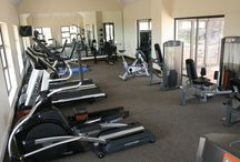 Gym Equipment / There are three basic categories of gym equipment that you will find at a commercial health club, corporate gym, home gym and when buying gym equipment.  Read more: http://www.holisticgym.co.za/cardio-equipment/