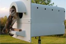 Owl Nest Boxes / Owl nesting boxes