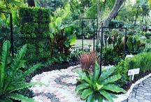gardening compettition@park nai leart  / Profile ออกแบบ :คุณนิตินันท์ อาจหาญ  คุณนิติพันธุ์ แก้วสุวรรณ์  คุณธัญญรักษ์ ลาภนิมิตรอนันต์   พื้นที่สวนตัวอย่าง: 9 ตารางเมตร ไอเดียนี้เหมาะกับ ; มุมเล็กๆนอกบ้าน ระเบียง ดาดฟ้า แนวความคิด : ต้องการให้สวนแห่งอนาคตประกอบด้วย ความงาม ประโยชน์ใช้สอย และการนำของที่มีอยู่มา รีไซเคิลตกแต่งสวน จึงใช้ผักสวนครัวรวมกับไม้ดอก ช่วยลดปัญหาโลกร้อนและลดปริมาณขยะไปพร้อมกัน / by Nic Nitipan Kaeosuwan