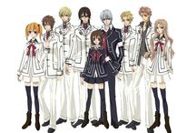 Anime-Book Vampire Knight