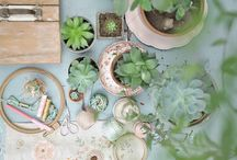 home//garden / by Bethany Huang