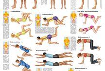 Wirbelsäule Gymnastik