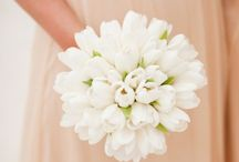 White Wedding Bouquets / Browse classic -- and unusual -- bouquet options in this traditional wedding color.
