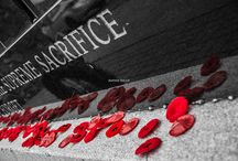 Photographs of Military Memorials, Equipment and more