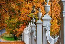 Board Theme - Autumn / Favorite Fall Inspiration