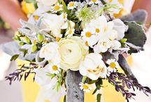 27 Dresses--- Friend's Weddings! / by Mary McHugh
