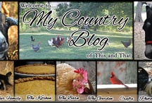 Farm Blogs / Hobby Farming.... I love seeing all the ideas on other people's farms. / by Tara Tarbet