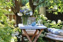 Garden  / by Lorraine Goldberg
