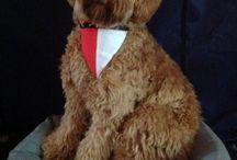 Cooper, onze Australian Labradoodle / Foto's van mijn Labradoodle