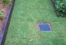 Landscaping / Landscaping Turf Project Cammeray