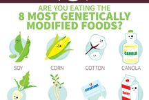 Say No To GMOs / by Toni Church