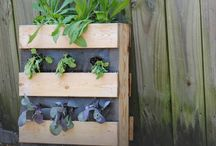 the wooden pallet / Here are some of our favorite ideas on to recycle and reuse a simple wooden pallet.