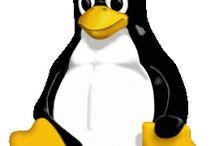 Aniversário do Linux – Comemore os 25 anos do sistema