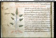 SCA/Medieval Herbal