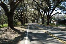 FLORIDA ONLINE