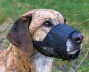 Trixie Köpek Ağızlıkları