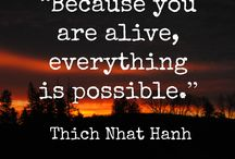 Thich Nhat Hanh / Quotes