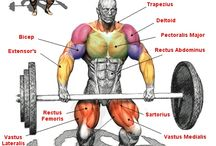 Compound lifting for health