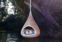 Bird nest design