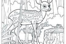 Coloring pages Adult