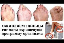 косточка ног