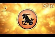 Vidensus - Jahreshoroskop 2018 / Was bringt das Venusjahr 2018? Mit unserem Jahreshoroskop bist Du bestens informiert!