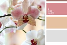 Kleurcomposities