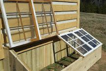 greenhouses/ cold frames / by Saranac Lake Community Garden
