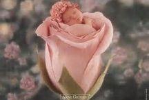 gaby b bloemenbabys /flowerchilderen (ANNE GEDDES) / gaby b bloemenbabys /flowerchilderen (anne geddes)