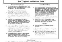 Cause and Effect / Cause and Effect Worksheets and Teaching Resources