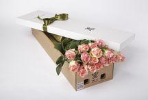 Розы.Цветы и подарки. Flowers and gifts. Roses. / Розы. Roses. Розы в подарочной коробке. Доставка Москва, Санкт-Петербург. Заказ онлайн.