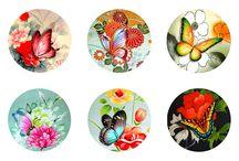 mandalas borboletas