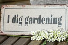 I DIG GARDENING / *****plant your own garden and decorate your own soul instead of waiting for someone to bring you flowers**** / by G M