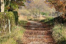 UK in autumn