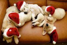 navidad dulce navidad