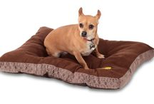 Dog Beds / A range of our new dog beds