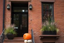 Fabulous Front Porch Ideas for Autumn / Taken from http://www.gardenista.com/posts/curb-appeal-15-ideas-to-steal-from-brooklyn-for-halloween  See plants at www.johnstowngardencentre.ie