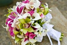 Future Wedding Ideas<3 / by Miranda Felger