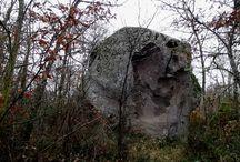 Il bosco del Pietreto / Nei dintorni di Vitorchiano, c'è un bosco misterioso con enormi massi di peperino dalle forme più bizzarre..