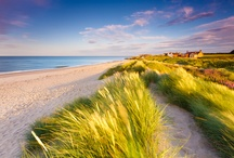 Beaches I love / by Carol Howlett