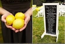 wedding photo ideas / by Meghan McCambridge