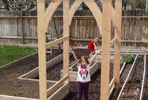 Garden Ideas & Tricks
