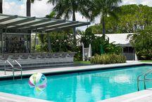 MiMo Miami