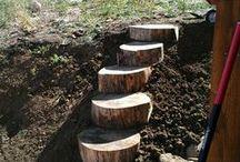 escalera tronco