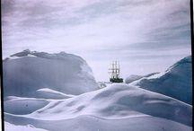 Antarctica / by Prue Miles