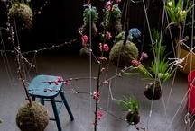 Sublime Spaces / by Lori Green